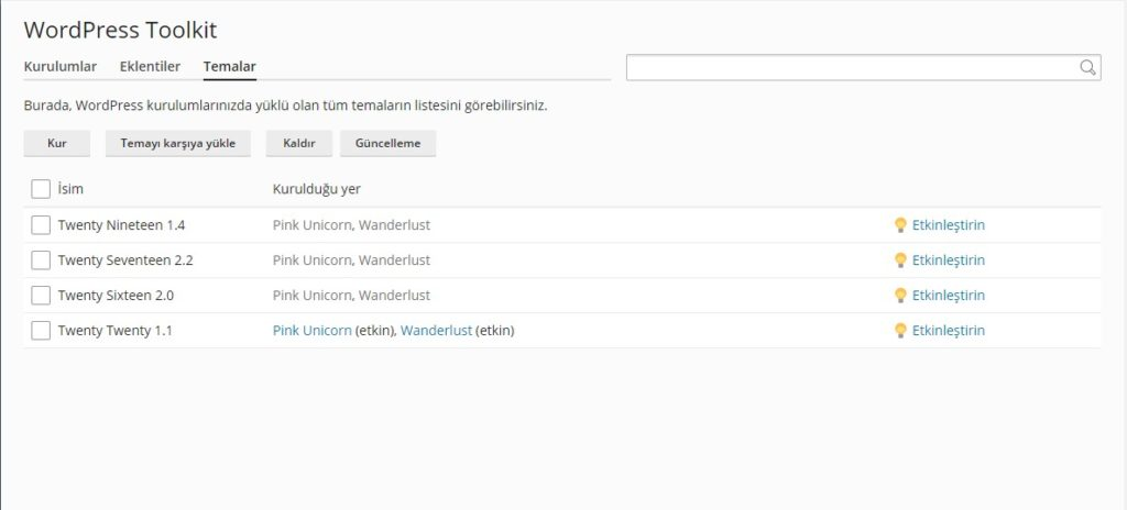 WordPress Toolkit tema yönetimi