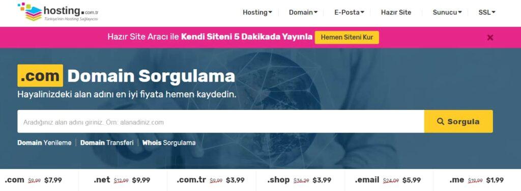 domain sorgulama ekranı