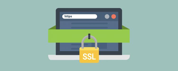 Neden Bir SSL Sertifikasına İhtiyacınız Var?