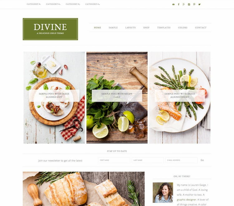 wordpress yemek teması divine