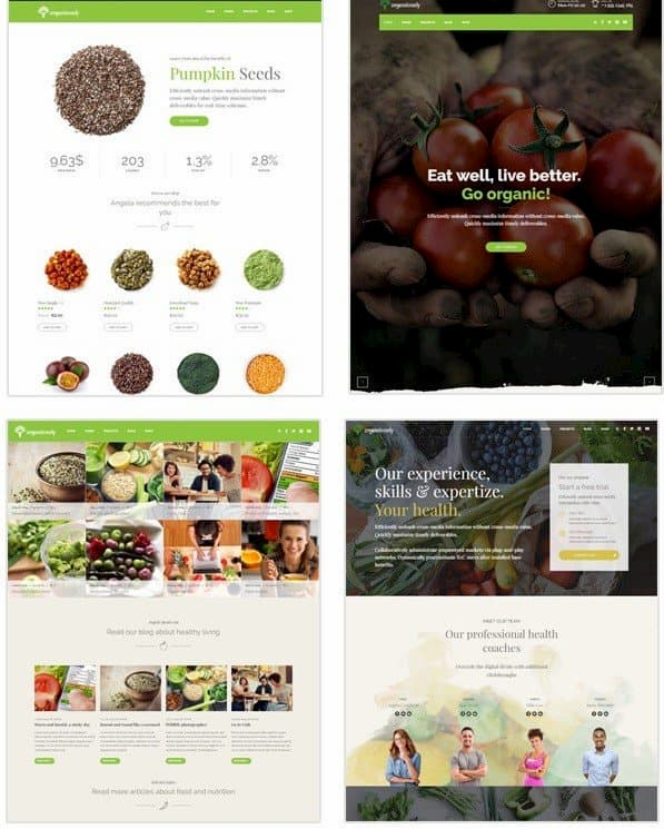 wordpress yemek teması organic food