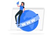 Türkçe Domain Mevcut İnternet Ortamında İyi Performans Gösterir Mi?